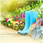 Garden & Outdoor improvements